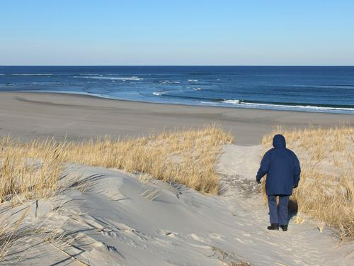 In January At Low Tide Betty Lou Exits The Yellow Trail Going From Sand Dunes